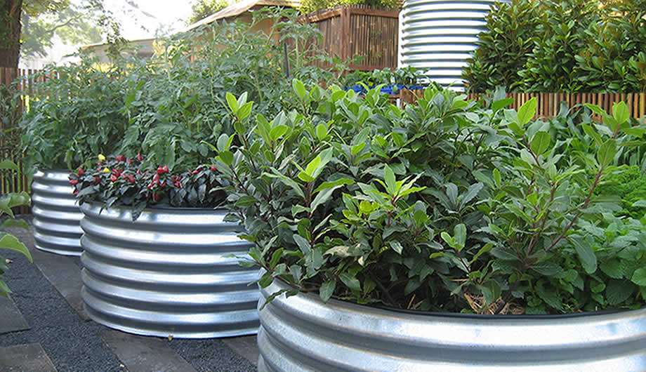 garden design with raised corrugated veggie and garden beds adelaide south australia with shrub landscaping ideas - Garden Ideas Adelaide